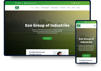 Provide Web Design & Development Service for EON Group